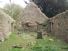 27. Dunfierth Church, Co. Kildare