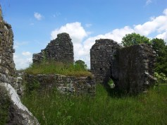 19. Tullaherin Monastic Site, Co. Kilkenny