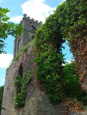 11. Dungarvan Church, Co. Kilkenny