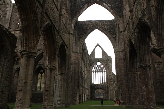 36. Tintern Abbey, Monmouthsire, Wales