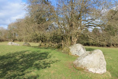 09. Broadleas Stone Circle, Co. Kildare