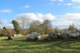 13. Broadleas Stone Circle, Co. Kildare