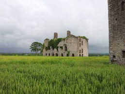 15. Rathcoffey Castle, Co. Kildare