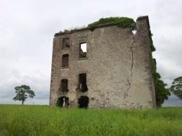 17. Rathcoffey Castle, Co. Kildare