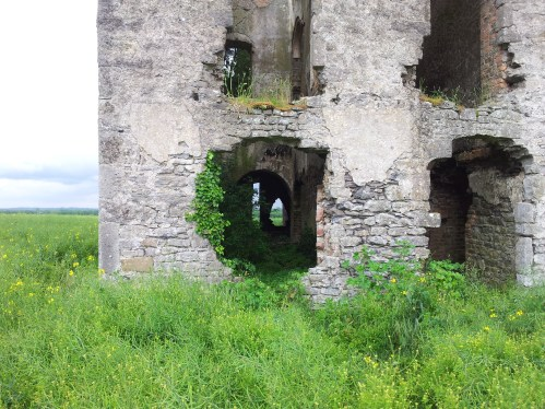 19. Rathcoffey Castle, Co. Kildare