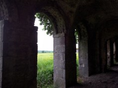25. Rathcoffey Castle, Co. Kildare