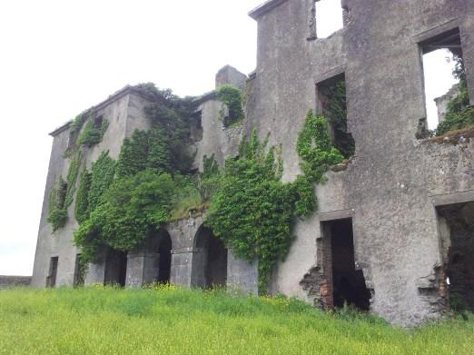 29. Rathcoffey Castle, Co. Kildare