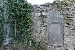 06. Clonenagh Church, Co. Laois