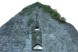 08. Clonenagh Church, Co. Laois