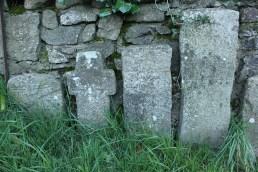 14. Clonenagh Church, Co. Laois