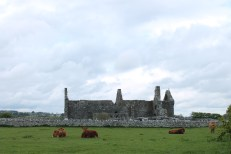 01. Clontuskert Priory, Co. Galway