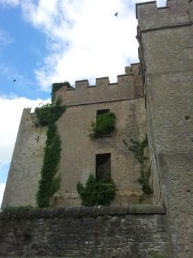 07. Donadea Castle, Co. Kildare