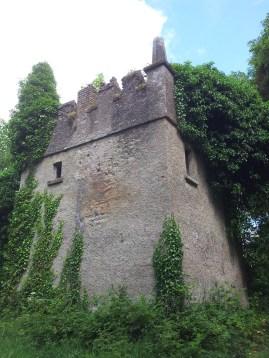 48. Donadea Castle, Co. Kildare