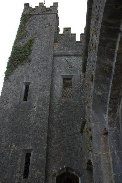 54. Donadea Castle, Co. Kildare