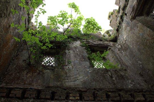 55. Donadea Castle, Co. Kildare
