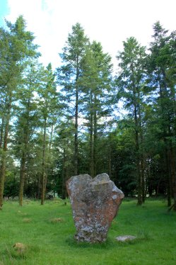 01. Knickeen Ogham Stone, Co. Wicklow