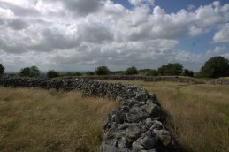 05. Rathgall Hillfort, Co. Wicklow