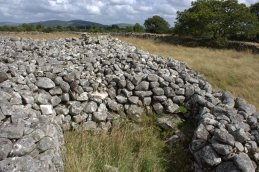 16. Rathgall Hillfort, Co. Wicklow