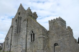 03. St. Mary's Collegiate Church, Co. Kilkenny