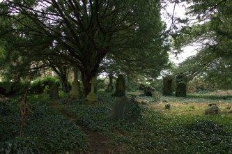18. Church of St Columba, Co. Kildare