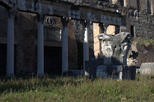 19. Roman Forum, Rome, Italy