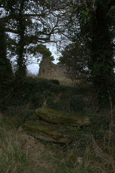 21. Lemanaghan Ecclesiastical Site, Co. Offaly