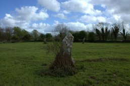 02. Knappogue Standing Stones, Co. Clare