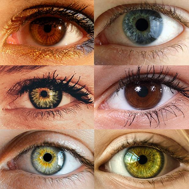 Northern Light Eye Care