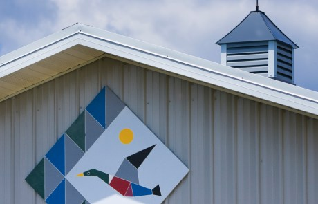 Flying Duck Barn Quilt