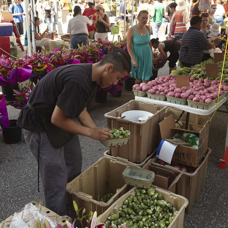Downtown Farmers Market Flowers and Fresh Produce