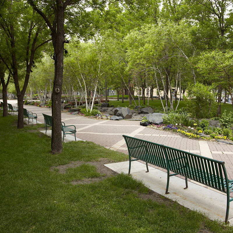 Twin Cities park with park bench