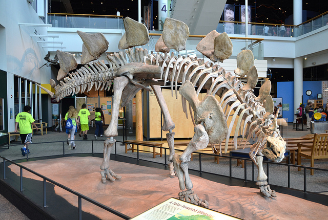 "Science Museum of Minnesota. Image by <a href=""https://flic.kr/p/cbpu19"" target=""_blank""> jpellgen/flickr</a>"