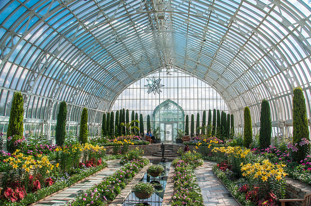 Inside a garden at a conservatory