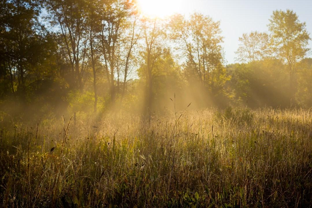 """Foggy Morning Photo by <a href=""""https://flic.kr/p/fQnVhi"""" target=""""_blank"""">Brett Whaley/flickr</a>"""