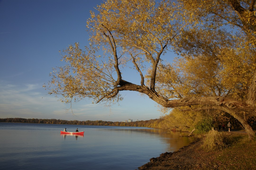 Canoes on Lake Harriet