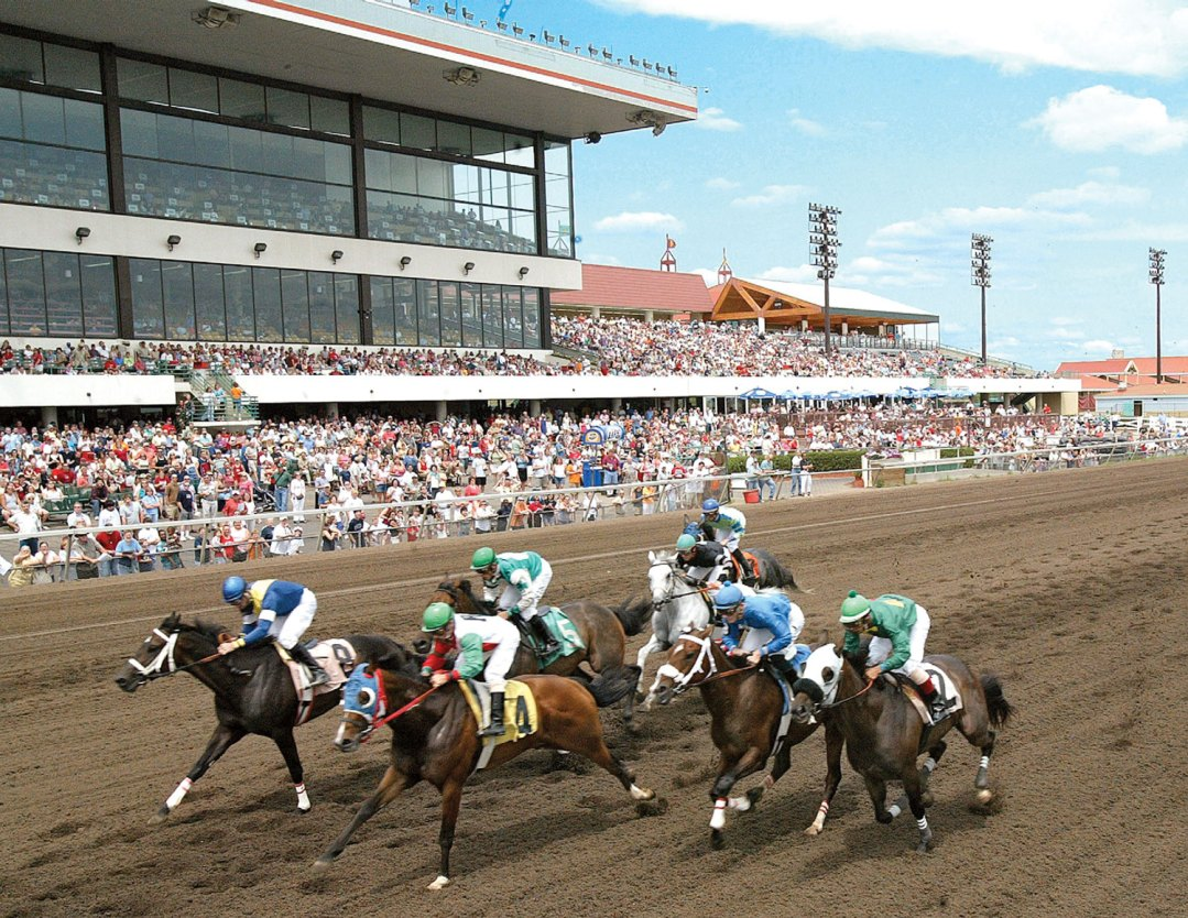 "Day at the Races. Image by <a href=""http://www.canterburypark.com/"" target=""_blank"">Canterbury Park</a>"
