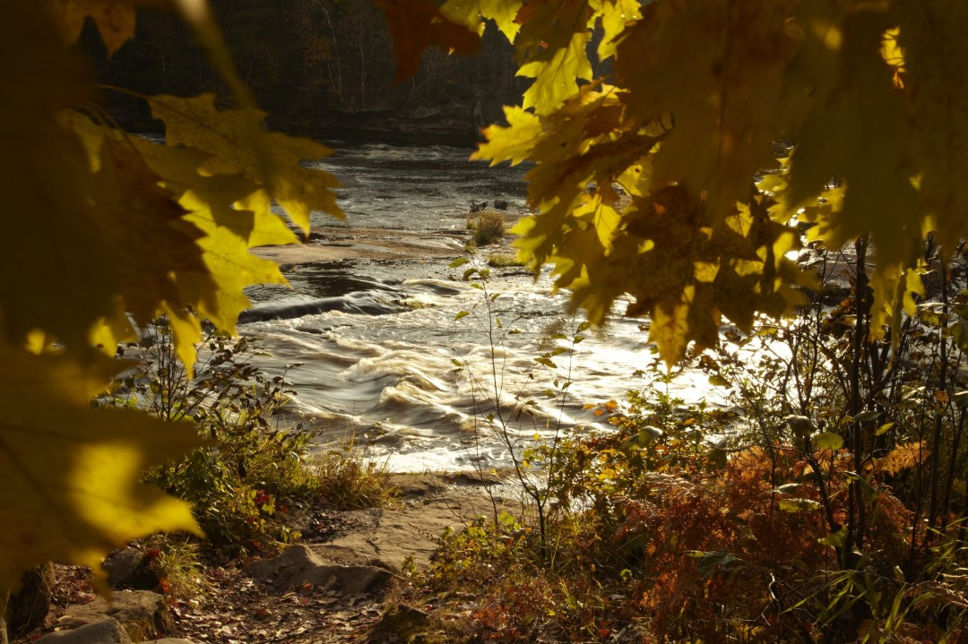 A glimpse of the St. Croix River through some leaves.