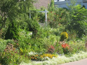 Vera's Garden in the Midtown Greenery. Urban Oases in the Twin Cities