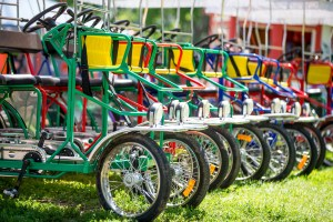 Bikes from Wheel Fun Rentals lined up on the grass.