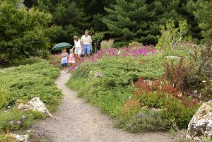 A family walks down the gently curving path of the Peace Garden while admiring the flowers.