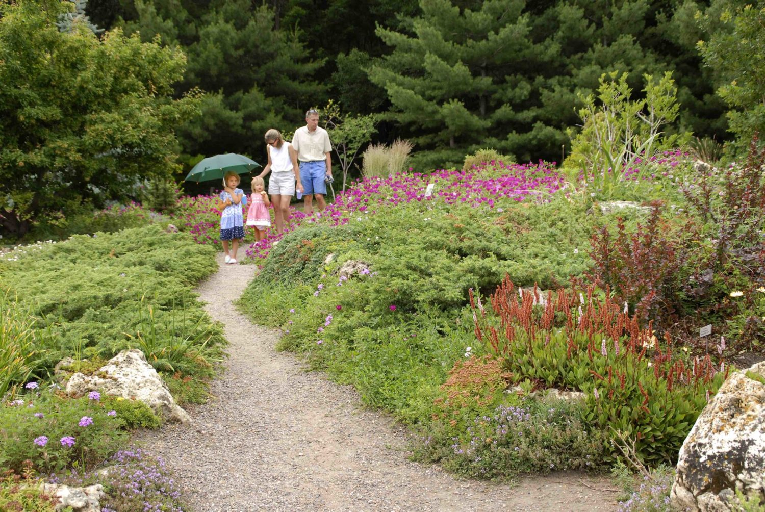 A Family Walks Down The Gently Curving Path Of The Peace Garden While  Admiring The Flowers