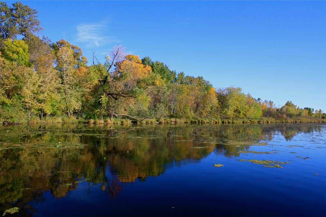 A lake lined with trees during fall at Fort Snelling State Park.