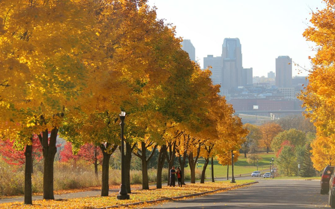 Twin Cities Thrifty Traveler-Fall Edition