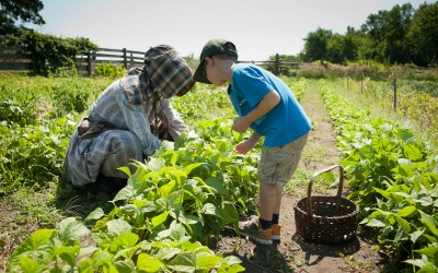 Life on the Farm: Seasonal Programs at Oliver Kelley Farm