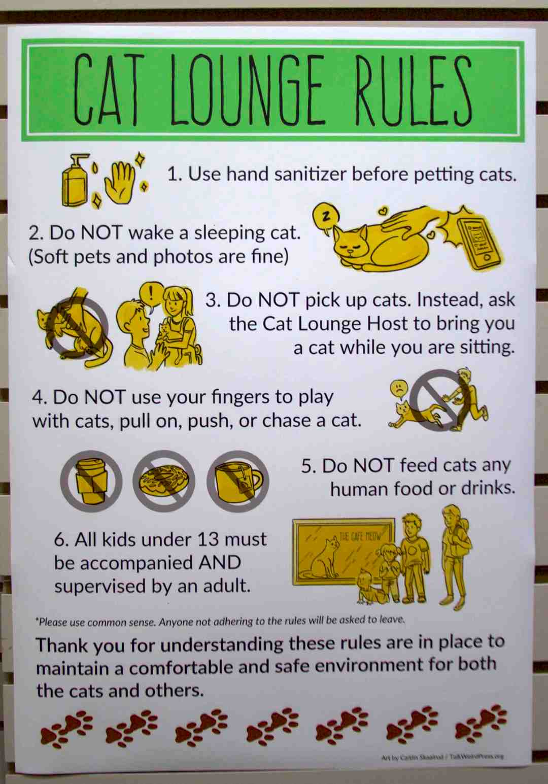 The Rules of the Cat Room