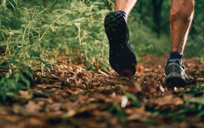 Trail Running in Minneapolis and St. Paul