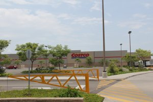 Hotel Zone: Costco in Fluvial Neighborhood of PV