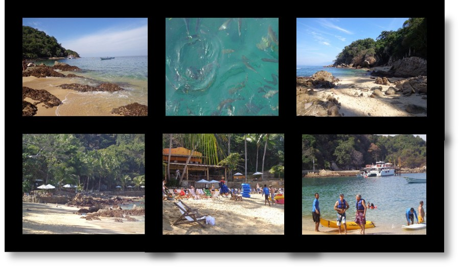 Vallarta Adventures Las Caletas Puerto Vallarta Mexico