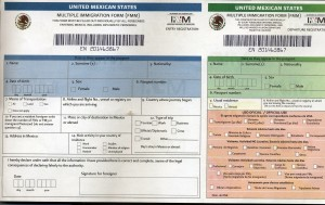 Mexico Immigration Form