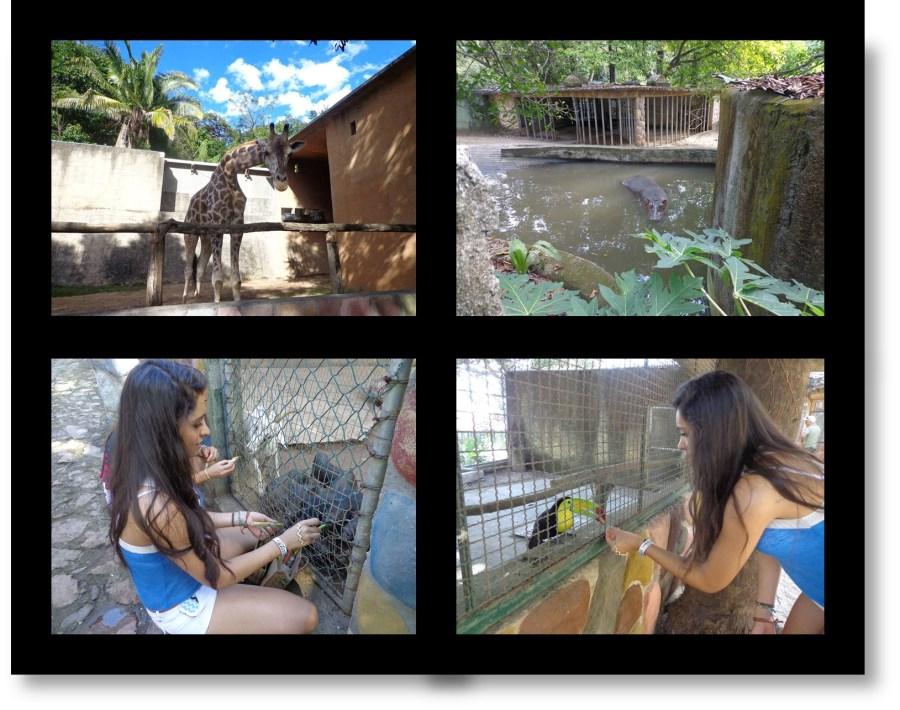 Vallarta Zoo in Puerto Vallarta, Mexico
